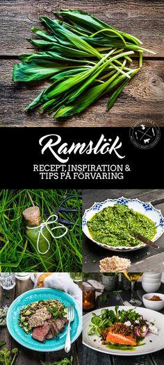 Ramslök – Recept, inspiration och tips på förvaring