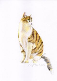 custom portrait of your cat --Mother's Day gift by JingfenHwu on Etsy  $50