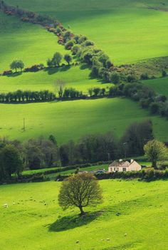 Beautiful landscapes, Tipperary, Ireland.