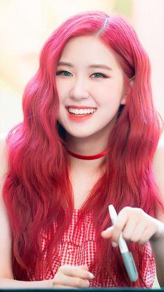 Blackpink In Your Area💜 Kim Jennie, Black Pink Kpop, Blackpink Photos, 1 Rose, Blackpink Jisoo, South Korean Girls, Kpop Girls, Ulzzang, Divas