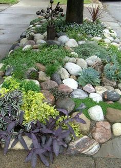 Oversized round stone with low growing perennials