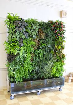 17 brilliant plant walls to bring the outdoors inside