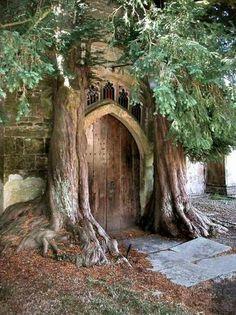 Portal to magical tree house. enter now. what do you see inside? Cool Doors, The Doors, Unique Doors, Windows And Doors, Panel Doors, Tiny House Design, Door Knockers, Garden Gates, Doorway
