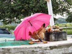 http://brinqueeclique.blogspot.com.br/