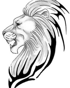 Lion tattoo line Lion Drawing Pictures, Lion Head Drawing, Lion King Drawings, Lion Pictures, Pictures To Draw, Realistic Lion Drawing, Tribal Lion Tattoo, Lion Head Tattoos, Lion Tattoo Design