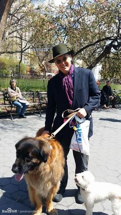 the blacklist james spader | James Spader walked his dog(small one) in the park.The left dog isn ...