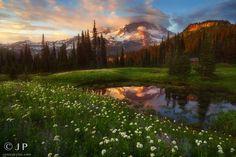 Secret Garden by Jamey  Pyles©  on 500px