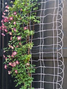 Upcycled Garden Volume Using Recycled Salvaged Materials In Your Garden Vertically hung garden fence edging serves as a unique trellis (Dishfunctional Designs)Vertically hung garden fence edging serves as a unique trellis (Dishfunctional Designs) Diy Garden, Dream Garden, Lawn And Garden, Garden Projects, Garden Art, Garden Landscaping, Garden Design, Upcycled Garden, Fence Garden