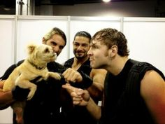 THE SHIELD and puppy