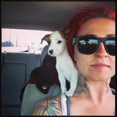 pit bulls and parolees - Yahoo Image Search Results