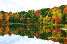 I uploaded new artwork to fineartamerica.com! - 'Autumn With Colorful Foliage And Water Reflection 5' - http://fineartamerica.com/featured/autumn-with-colorful-foliage-and-water-reflection-5-lanjee-chee.html via @fineartamerica