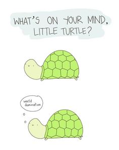 What's on your mind little turtle?