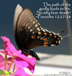 The path of the godly leads to life. So why fear death? ~Proverbs 12:27-28 TLB