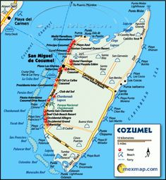 If you're going to Cozumel on a cruise you don't want to miss these 5 really cool things to do while in port. Cozumel, Mexico is one of my favorite ports to visit and there are a lot of things you can do on the island. Cozumel Snorkeling, Cozumel Excursions, Cozumel Cruise, Cruise Port, Cruise Tips, Cruise Travel, Caribbean Cruise, Cruise Vacation, Family Cruise