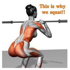 With a weight included, squatting works a large number of muscles at once