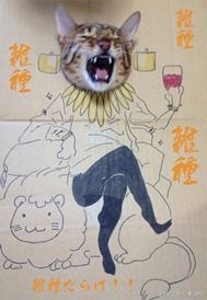 It was Guagua's birthday celebration and his owner, toshiya86 drew these characters on cardboard.