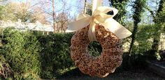 How to make a bird seed wreath... Recipe included!  With pictures!