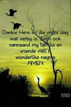 Good Night Quotes, Good Morning Good Night, Evening Greetings, Goeie More, Sufi Quotes, Afrikaans Quotes, Special Quotes, Sleep Tight, Pretty Pictures