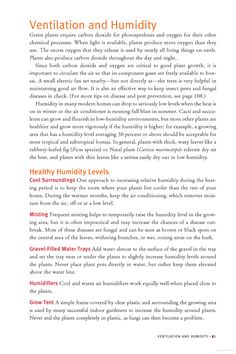 Growing Bonsai Indoors - Google Books