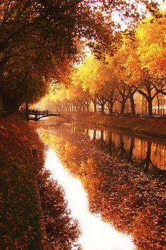 Autumn Glory ~ Reflections