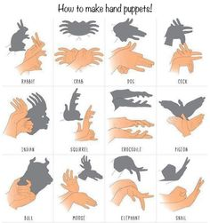 1000 Life Hacks, I kinda love shadow puppets for some reason