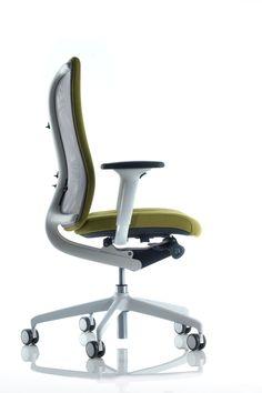 Senator Agitus Chair
