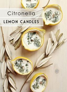 DIY Citronella Lemon Bowl Insect Repellent Candles - - Is there anything more satisfying than an end of summer get-together under the stars? Make DIY Citronella Lemon Bowl Candles recipe to repel insects outdoors! Velas Diy, Lemon Bowl, Candle Making Business, Citronella Candles, Beeswax Candles, Homemade Candles, Diy Vegan Candles, Diy Candles Scented, Homemade Gifts