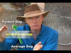 Don Sullivan The DogFather How To Train Your Dog To Be Your Best Friend  #dogtrainingtips #puppies #dogs