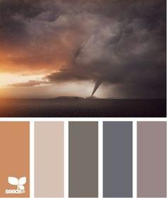 Grappig, een natuurfoto ter inspiratie voor kleurencombinatie