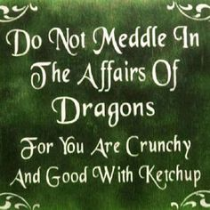 Do not meddle in the affairs of dragons. For you are crunchy and good with ketchup. Love this, except I don't like ketchup! Mustard would work. Me Quotes, Funny Quotes, Funny Phrases, Quotable Quotes, Humor Quotes, Quotes Images, Auryn, Thing 1, Ketchup