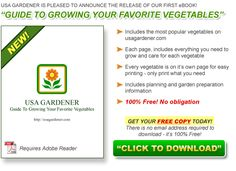 Absolutely FREE e-reader download.  Guide to Growing Your Favorite Vegetables.