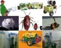 شركة مكافحة حشرات بالرياض 0507570933 رش مبيد دفان ونمل أبيض وجميع انواع الحشرات مع الضمان وبدون مغادرة المنزل