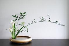 Risultati immagini per ikebana arte floral japones Ikebana Arrangements, Ikebana Flower Arrangement, Modern Flower Arrangements, Flower Vases, Cactus Flower, Arte Floral, Exotic Flowers, Beautiful Flowers, Purple Flowers