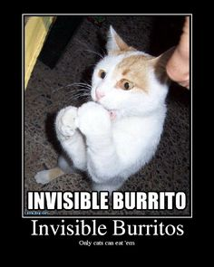 Invisible burritos, unfortunately, only feed cats. People need visible burritos.