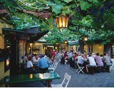 Viennese Heuriger (Wine Garden) <3 Vienna, Austria