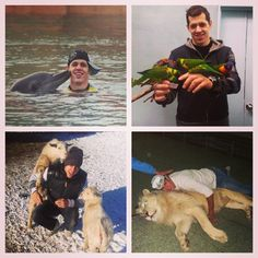 And now, a collage of Evgeni Malkin posing with animals. #EvgeniMalkin #PittsburghPenguins #LetsGoPens