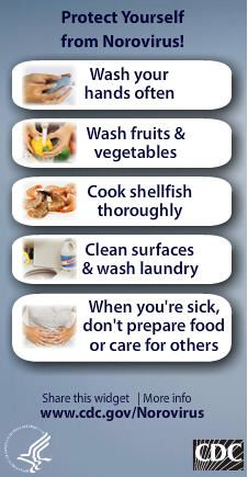 1000+ images about Norovirus & Outbreak on Pinterest ...