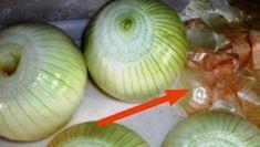 Do you throw away onion skins? Nigella Sativa, Coffee Grain, Easter Egg Dye, Lifehacks, Food Waste, Egg Shells, Freshly Baked, Cool Tools, Food Hacks