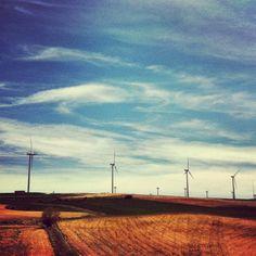 Viajando con el viento // by Motha #windpower #field