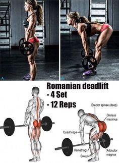 a powerlifting deadlift workout Fitness Workouts, Weight Training Workouts, Gym Workout Tips, Butt Workout, At Home Workouts, Fitness Tips, Hip Thrust Workout, Fitness Studio Training, Powerlifting Training