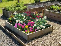 Raised flower beds made from Pressure treated timber boards. Smooth planed and bull nosed edges look fantastic when planted with your choice of bedding plants. Raised Flower Beds, Raised Garden Beds, Raised Beds, Container Gardening, Gardening Tips, Organic Gardening, Flower Bed Designs, Easy Garden, Garden Ideas