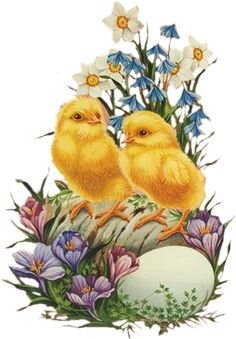 Easter chicks and flowers