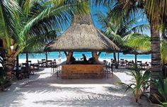 Island Beach Bar Thatched Hut Cabana #palm+tree #sand