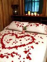 romantic bed with rose petals. Sexy Valentine's Day Night