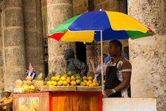 Las 8 #frutas que más gustan al #cubano http://www.cubanos.guru/las-8-frutas-mas-gustan-al-cubano/