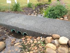Hard surfaces, such as traditional concrete and asphalt, allow rainwater to flow more easily off our yards, carrying pollutants to storm drains and waterways. Permeable pavement, such as porous concrete, allow water to infiltrate the ground, which decreases the amount of water that runs off of the yard. This helps to keep our waterways clean and healthy, and reduces local flooding.
