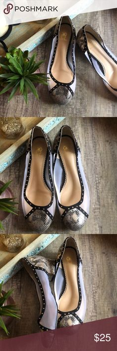 """Rara Avis Snake/ Mesh Flats In excellent condition One shoe has a little slack as shown in picture but does not affect the wear of the shoes.   Has a 1"""" heel Rara Avis Shoes Flats & Loafers"""