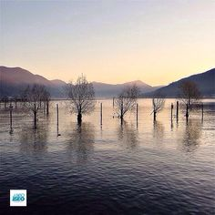 Location:#Paratico (Bs) Photo Credit instagram.com/sonnocolla IT Ti ringraziamo per aver condiviso questa immagine di uno dei comuni del lago d'Iseo (Tags: #visitlakeiseo - #lakeiseo - #lagodiseo) EN Thank you for sharing this image of one of the municipalities of Lake Iseo #Lombardia #inLombardia #Lombardiadavivere #visitLombardy #visitBrescia #visitBergamo #Italia #Italy #italialaghi #romanticitaly