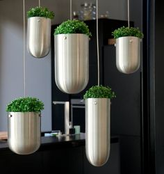 FLOATING GARDEN, a new concept by Gabriella Asztalos. Would make the use of fresh herbs while cooking super easy...