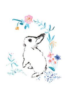 Dwarf Hotot Bunny Print Limited Edition by flossandco on Etsy, Bunny Tattoos, Rabbit Tattoos, Flower Tattoos, Bunny Drawing, Bunny Art, Floral Illustrations, Illustration Art, Building Illustration, Kawaii Bunny